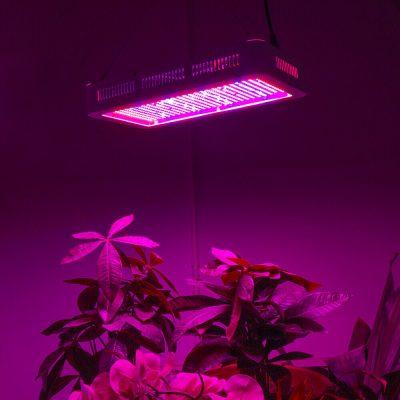 led apšvietimas augalams daiginti ir auginti_7