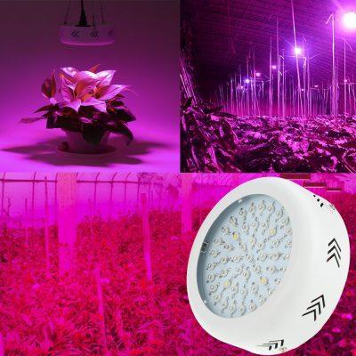 led panelė augalams daiginti ir auginti_2