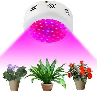 led panelė augalams daiginti ir auginti_3