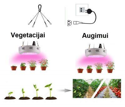 led panelė augalams daiginti ir auginti_7