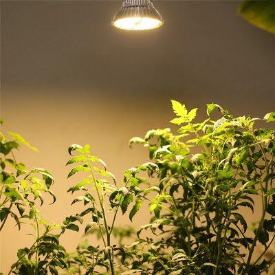 180 LED lemputė augalų auginimui 120 W_