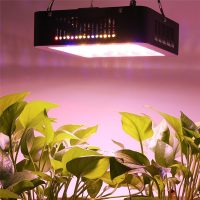 LED panelė su dvigubais diodais augalams auginti 600W