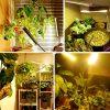 LED apšvietimas su tvirtinimu valdikliu augalams_1